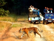 Delhi (Arrive)-Mussoorie(02 Nights), Corbett(01 Night), Nain