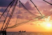 Exotic experience in Kerala. (  7 Nights )