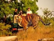 Delhi -nainital, Ranikhet, Corbett - Delhi Tour Package