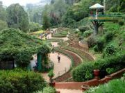 2 Nights Ooty Package From Bangalore