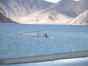 Majestic Leh Ladakh Road Trip Srinagar - Kargil - Leh - Pang