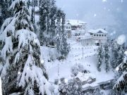 Himachal Package Starting From Inr 6950/-