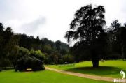 3 Nights Ooty Package From Bangalore
