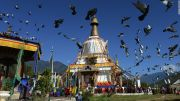 Luxury Bhutan Package ( 8 Days/ 7 Nights )