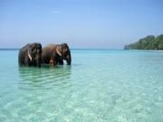 Luxury Andaman Honey Moon