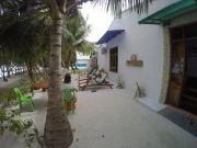 Mesmerizing Maldives