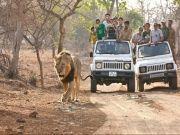 Enjoy The Trip & Make Your Best Holiday Gujarat (  )
