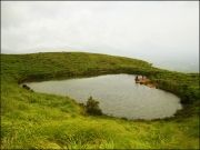 BEST OF SOUTH INDIA - MYSORE OOTY COORG & WAYANAD (  7 Nights )