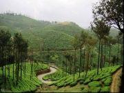 http://www.hlimg.com/images/deals/180X135/Kerala1493896668-0-.jpg