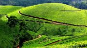 http://www.hlimg.com/images/deals/180X135/Kerala1497268012-0.jpg