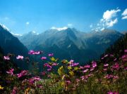Amazing Himachal with Shimla and Manali - With Flights ( 7 Days/ 6 Nights )