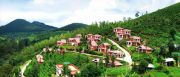Bangalore Ooty Mysore Kodaikanal ( 7 Days/ 6 Nights )