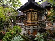 Honeymoon In Bali & Singapore