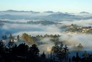 4N5D Honeymoon Tour Package of South India - Charming Coorg  ( 5 Days/ 4 Nights )