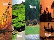 6n/7d Exotic Kerala Tour Package