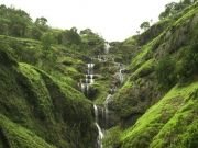 Coorg Weekend Tours