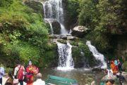 IHC-89 Darjeeling Pelling Tour 5 Days (  4 Nights )