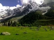 Kashmir Package for 7 Days & 6 Nights