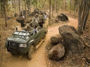Tiger Safari in Tadoba (  2 Nights )