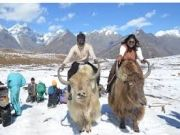 Classic Delights Himachal Tour ( 7 Days/ 6 Nights )