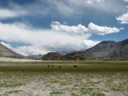 Ladakh Ecstasy (07 Nights / 08 Days)