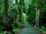 Kerala Honeymoon Special (  )