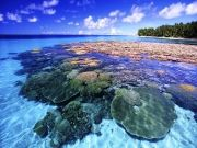 Andaman Tour 5 Nights 6 Days