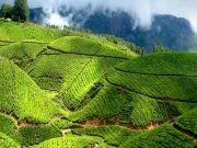 5 Days Kerala Budget Tour