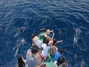 Maldives - Herathera Island Resort 4n/5d