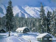 Kashmir Honeymoon Package 5 Nights / 6 Days
