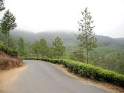 Coimbatore - Ooty - Munnar - Coimbatore Package ( 4 Days/ 3 Nights )