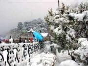 Shimla Family Trip - Toy Train