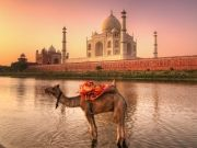 The Buddhist Tour of North India 14Days/13Nights