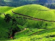 Scenic Sri Lanka