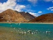 Thrilling Ladakh