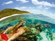 Hamilton Island Tour ( 4 Days/ 3 Nights )