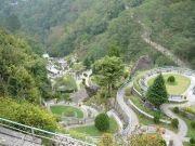 Golden Tour Of Kanchendzonga