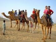 Golden Triangle with Desert Tour ( 14 Days/ 13 Nights )