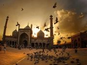 Best Of India Tour 11 Night / 12 Days (  11 Nights )