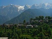 Dharamsala Volvo Package 04 Nights / 5 Days