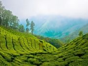 Appealing Kerala Tour Package