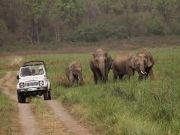 Corbett With Uttarakhand 5 Nights / 6 Days