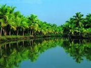 Kerala 4 Nights / 5 Days (  4 Nights )