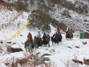 Discover Gangtok (  )