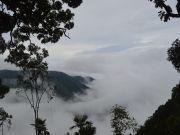 Kaziranga & Meghalaya Tour
