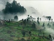 South India Tour Package (  7 Nights )