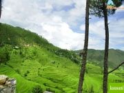 Uttarakhand Holidays Package