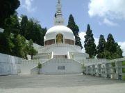 A Pass To Darjeeling Tour ( 4 Days/ 3 Nights )
