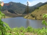 Trip Cochin - Munnar - Thekkady Tour