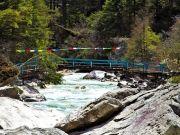 Pleasure In Sikkim And Darjeeling